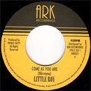 Little Roy / Come As You Are - Stain (7