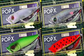 完全限定 POPX キャンペーン 4色