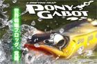 PONY GABOT