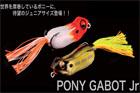 PONY GABOT Jr.