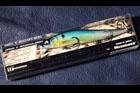 魚矢 逆輸入 VISION110 (USA)