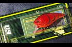 魚矢 逆輸入 KNUCKLE60 (USA)