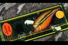 魚矢限定(SP-C) NEW VIBRATION-X (ラトルイン・モデル)