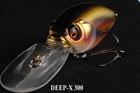 DEEP-X 300