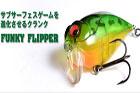 FUNKY FLIPPER