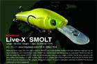LIVE-X SMOLT
