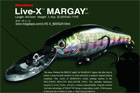 LIVE-X MARGAY