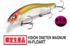 VISION 110 MAGNUM HF (ハイフロートモデル)