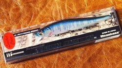 VISION110 (SP-C) 琵琶ハスシークレット