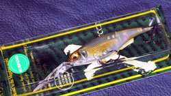 SHADING-X 75 SP (SP-C) NC 湖西ワカサギ