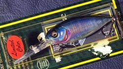 DEEP-X300 (SP-C) 琵琶ハスシークレット