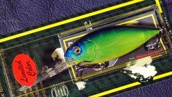 DEEP-X300 (SP-C) 琵琶湖シースルーチャート