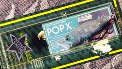 POP-X (SP-C) SS CRYSTAL