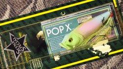 POP-X (SP-C) SS TRIPLE COCKTAIL