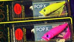 中央漁具 新社屋完成記念 POP-X セット