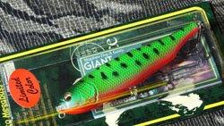 魚矢60周年記念限定 GIANT DOG-X グリーンコーチドッグ