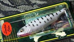 魚矢60周年記念限定 GIANT DOG-X ホワイトコーチドッグ