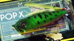 魚矢60周年記念限定 POP-X グリーンコーチドッグ
