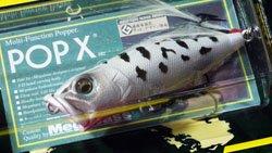魚矢60周年記念限定 POP-X ホワイトコーチドッグ