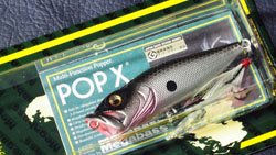 魚矢逆輸入 POP-X (USA) OZARK SHAD