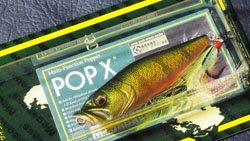 魚矢逆輸入 POP-X (USA) PERCH