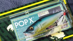 魚矢逆輸入 POP-X (USA) PM THREADFIN SHAD