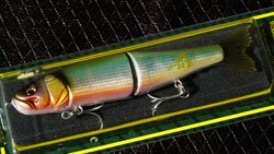 25th 極 & windyside ロゴペイントXS SUPER LIMBERLAMBER (FS モデル) ハス