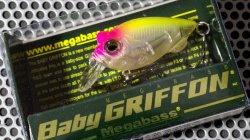 BABY GRIFFON NC ハチロー