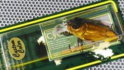 SR-X CYCLONE GG エイリアンゴールド