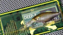 DEEP-X100 GW 琵琶湖ワカサギ