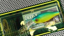 DEEP-X100 ブルーバックチャートキャンディー