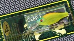 DEEP-X100 スケルトンチャート