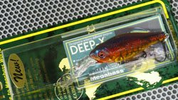 DEEP-X100 スポーンキラー