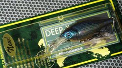 DEEP-X100 IL タマムシ OB