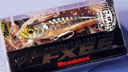 FX6.6 SW(SP) GG アカハライワシ