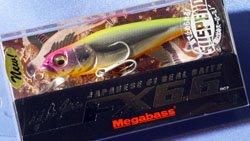 FX6.6 SW(SP) MG ティーザー