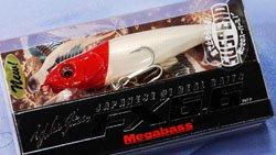 FX6.6 SW(SP) PM レッドヘッド