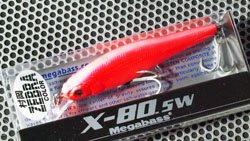 X-80SW (村岡・カラー) イブランゼブラ