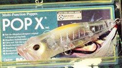 完全限定復刻 POP-X SK
