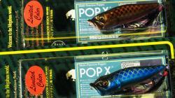 2013年 谷山商事限定 (SP-C) POP-X (独眼竜&黒脛巾) セット