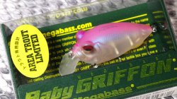 BABY GRIFFON (AREA TROUT LIMITED) NC フローズンピンク