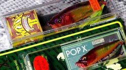 ツネミ限定 (SP-C) POPX&POP-MAX IL バブル セット
