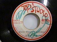 <b>Junior Byles / Know Where You Going - Jah Man All Stars / Zion I</b>