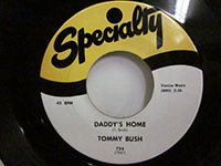 <b>Tommy Bush / Stop and Think - Daddy's Home</b>