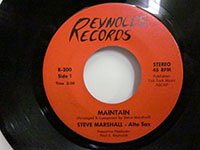 <b>Steve Marshall / Maintain - Creative Happiness</b>
