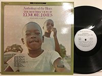 Elmore James / the Resurrection of