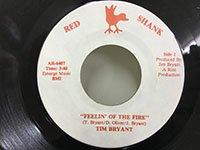 Tim Bryant / Feelin' of the Fire - inst
