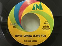 Blue Notes / Never Gonna Leave You - Hot Chills and Cold Thrills