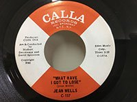 Jean Wells / What Have I Got to Lose - Broomstick Horse Cowboy