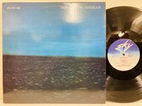 Eno Moebius Roedelius / After the Heat
